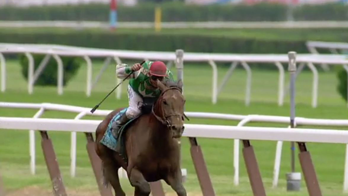 Afleet Alex wins 2005 Belmont Stakes after stumble in 2005 Preakness Stakes